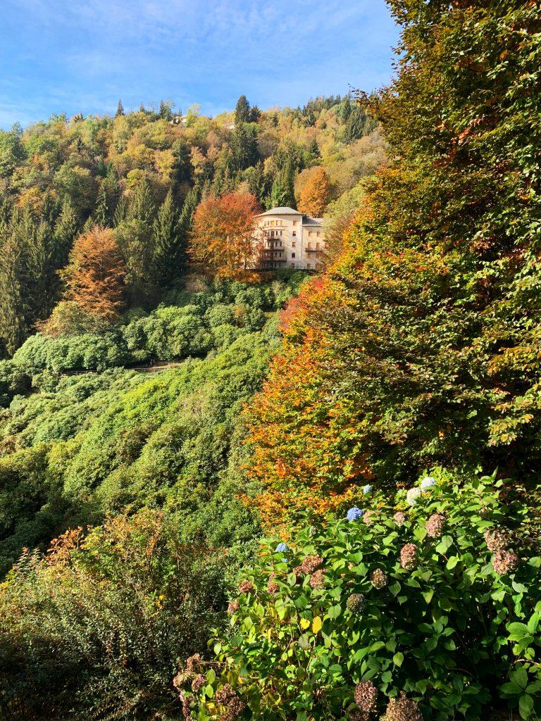 Foliage all'oasi zegna